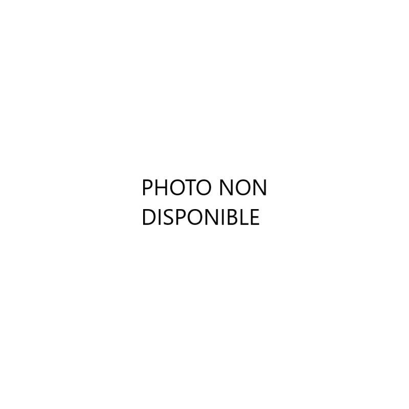 POUILLY-FUMÉ AOP - Domaine Clos du Roc